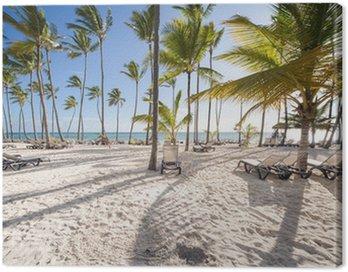 Quadro su Tela Spiaggia caraibica