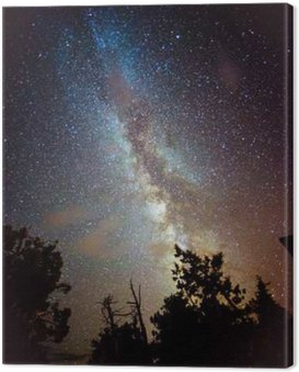 Quadro su Tela Via Lattea che sorge sul California