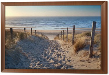 Quadro com Moldura path to North sea beach in gold sunshine