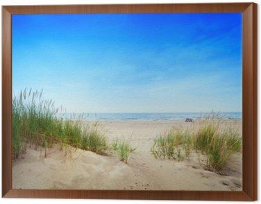 Quadro em Moldura Calm beach with dunes and green grass. Tranquil ocean