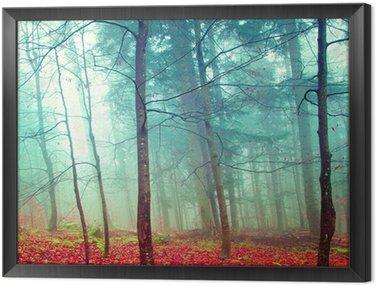 Quadro em Moldura Colorful mystic autumn trees