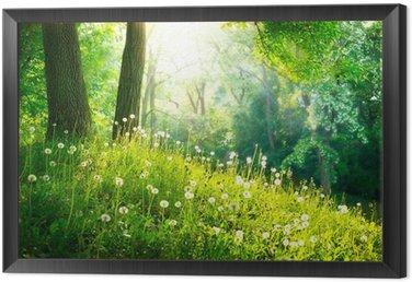 Quadro em Moldura Spring Nature. Beautiful Landscape. Green Grass and Trees