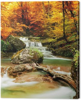 Quadro em Tela Autumn creek woods with yellow trees