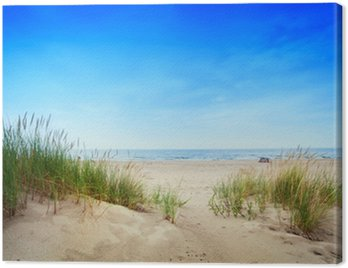 Quadro em Tela Calm beach with dunes and green grass. Tranquil ocean