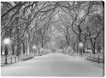 Quadro em Tela Central Park, Nova Iorque coberta de neve ao amanhecer