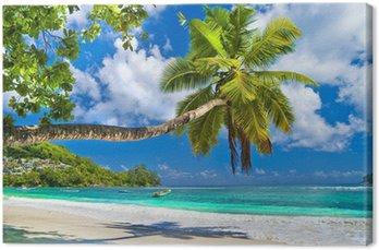 Quadro em Tela idyllic tropical scenery - Seychelles