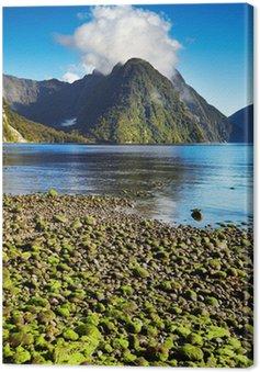 Quadro em Tela Milford Sound, Nova Zelândia