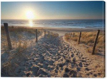 Quadro em Tela sunshine over path to beach in North sea