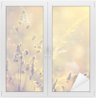 Raamsticker Retro wazig gazon gras bij zonsondergang met flair. Vintage paars rood en geel oranje kleur filter effect gebruikt. Selectieve aandacht gebruikt.