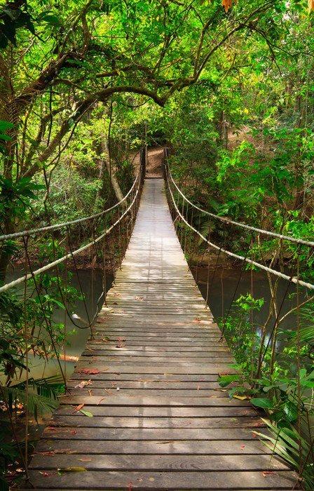 Rámovaný Obraz Bridge do džungle, Národní park Khao Yai, Thajsko -