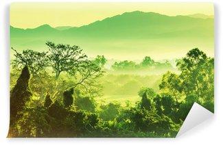Samolepicí Fototapeta Džungle v Mexiku