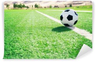 Samolepicí Fototapeta Tradiční fotbalový míč na fotbalovém hřišti