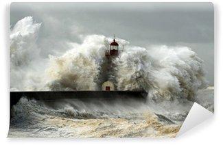 Samolepicí Fototapeta Windy pobřeží