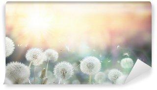 Selbstklebende Fototapete Feld voller Pusteblumen bei Sonnenuntergang