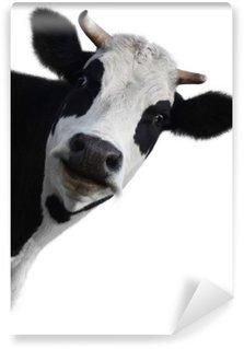 Selbstklebende Fototapete Kuh