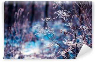 Selbstklebende Fototapete Pflanzen, die mit Raureif bedeckt