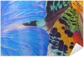 Selbstklebendes Poster Bunte Schmetterlinge Flügel