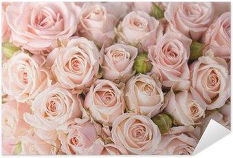 Selbstklebendes Poster Leuchtend rosa Rosen Hintergrund
