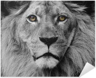 Lion eyes Self-Adhesive Poster