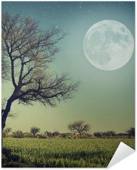Nature-68 Self-Adhesive Poster