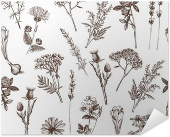 vector seamless pattern with ink hand drawn medicinal herbs sketch Self-Adhesive Poster