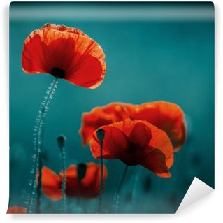 Self-Adhesive Wall Mural Amazing poppy field . Summer flowers .