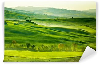 Bright green countryside in Tuscany Self-Adhesive Wall Mural