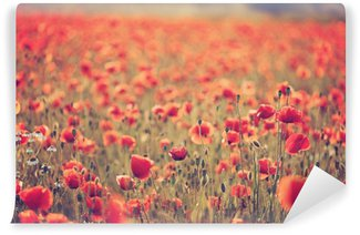 Poppy field Self-Adhesive Wall Mural