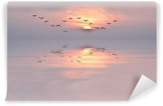 Soft colors of the dawn Self-Adhesive Wall Mural