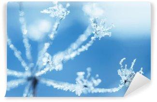 Umbelliferae plant in frost Self-Adhesive Wall Mural