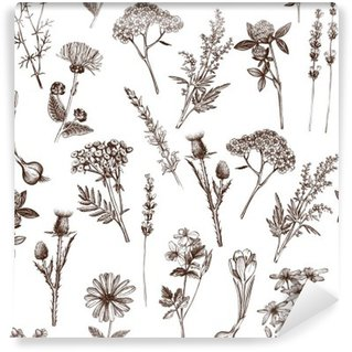 Self-Adhesive Wall Mural vector seamless pattern with ink hand drawn medicinal herbs sketch