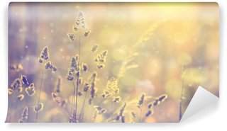 Självhäftande Fototapet Retro suddig gräsmatta gräs vid solnedgången med flare. Vintage lila röd och gul orange färg filtereffekt används. Selektiv fokus används.