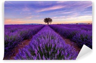 Självhäftande Fototapet Träd i lavendel fält på soluppgången i Provence, Frankrike