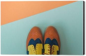 Stampa su Alluminio (Dibond) Piatto set di moda laica: scarpe vintage su sfondo colorato. Vista dall'alto.