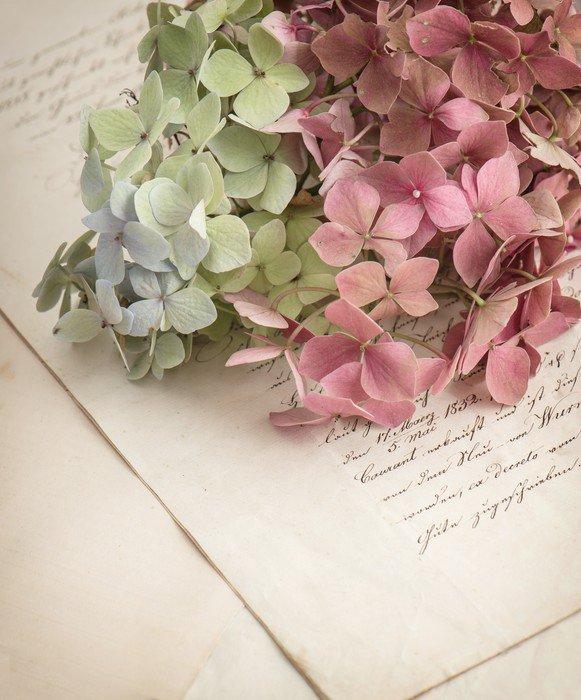 Obraz na Płótnie Stare listy miłosne i kwiaty ogrodowe - Tekstury