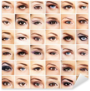 A collection of many female eyes with different makeup Sticker - Pixerstick