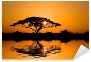 Sticker - Pixerstick acacia tree at sunrise