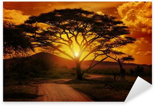 Sticker - Pixerstick Africa Sunset