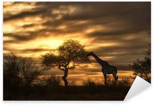 Sticker - Pixerstick african giraffe walking in sunset
