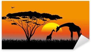 Sticker - Pixerstick African savanna an evening landscape