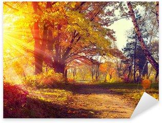 Sticker Pixerstick Automne. Automnal Park. Arbres et des feuilles à la lumière du soleil d'automne