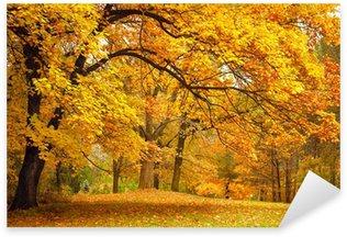 Sticker Pixerstick Automne / Gold arbres dans un parc