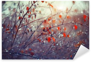 Sticker - Pixerstick background with branches and raindrops