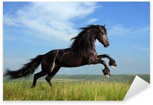Sticker Pixerstick Beau cheval noir jouant sur le terrain
