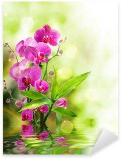 Sticker Pixerstick Belle orchidée et le bambou pour le traitement de la frontière spa sur l'eau