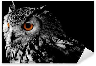 Sticker Pixerstick Bengali Eagle Owl (Vous pouvez bengalensis)