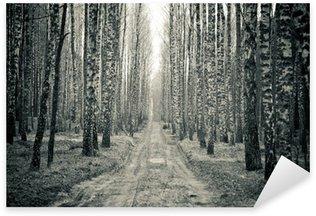 Pixerstick Sticker Berken zwart en wit bos