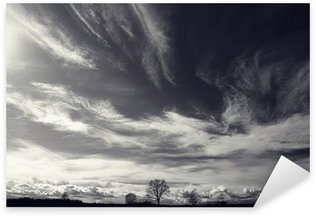 black and white photo autumn landscape Sticker - Pixerstick