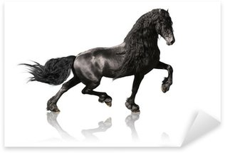 Sticker - Pixerstick black friesian horse isoalated on white
