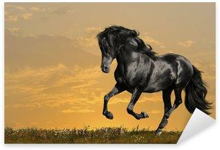 Sticker - Pixerstick black horse runs gallop